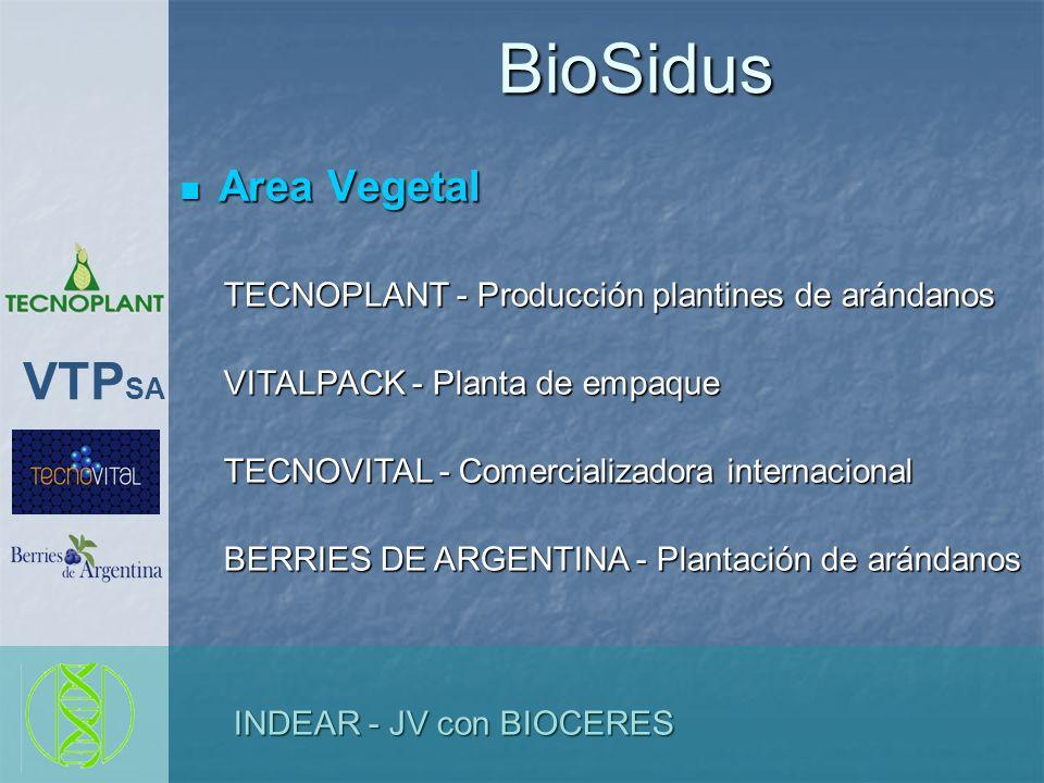 BioSidus Area Vegetal Area Vegetal TECNOPLANT - Producción plantines de arándanos TECNOPLANT - Producción plantines de arándanos VITALPACK - Planta de