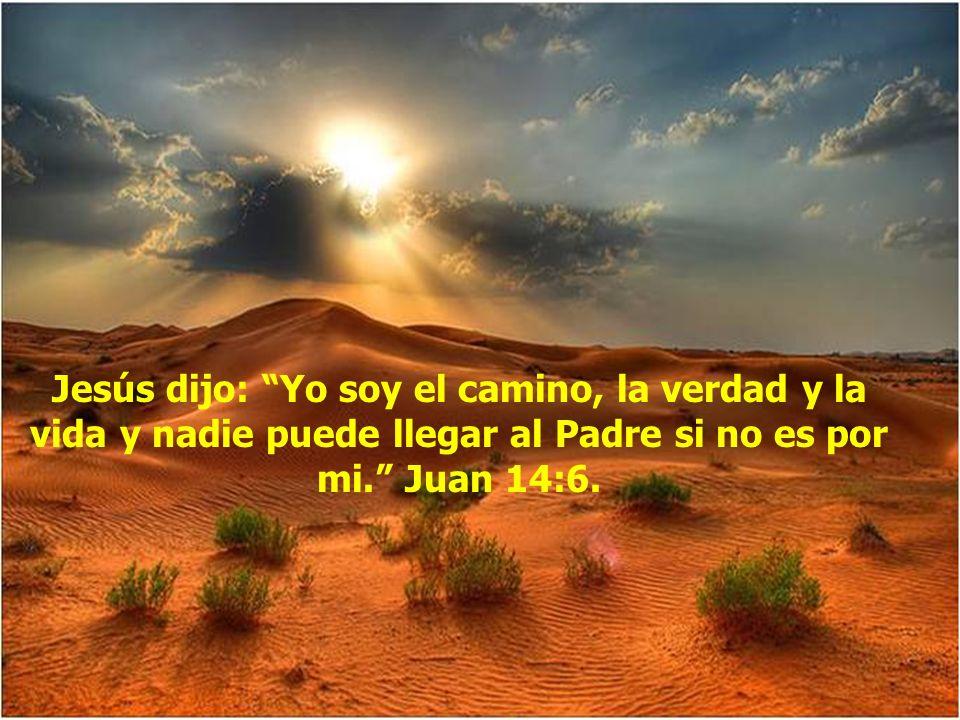 Dile: Gracias Señor Jesús porque me amas, gracias por haber puesto tu vida para que hoy tuviera paz, perdona de todo lo malo que haya hecho, ayúdame a