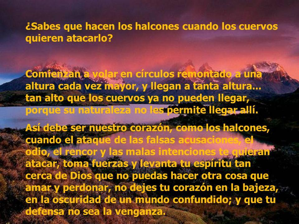 Jesús dijo: Yo soy el camino, la verdad y la vida y nadie puede llegar al Padre si no es por mi.
