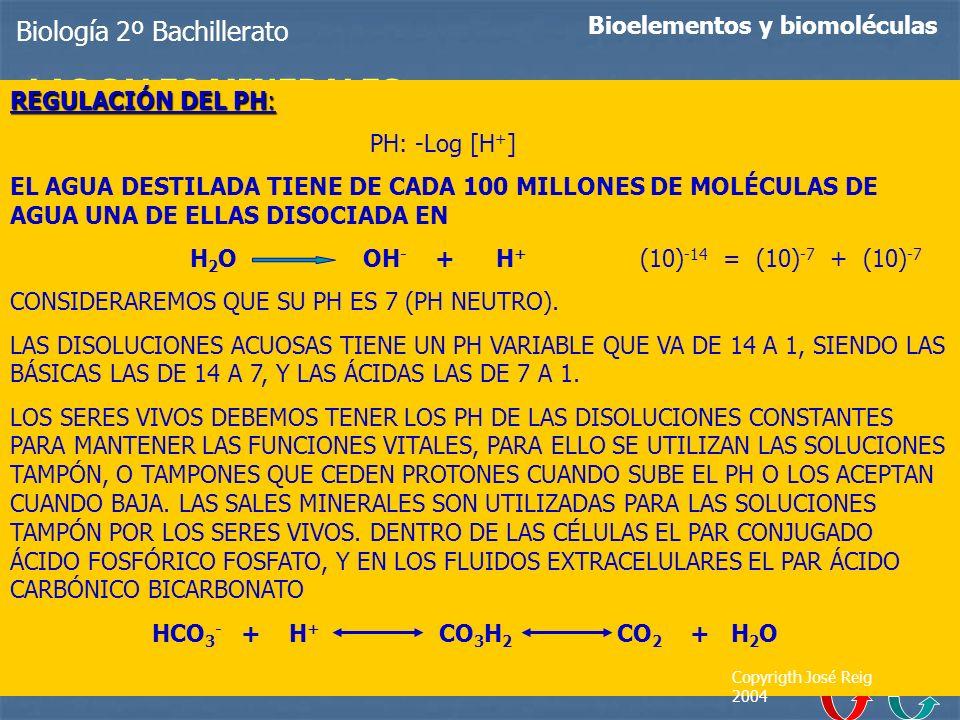 Biología 2º Bachillerato Bioelementos y biomoléculas LAS SALES MINERALES Sales precipitadas: Forman caparazones y estructuras diversas, tales como hue