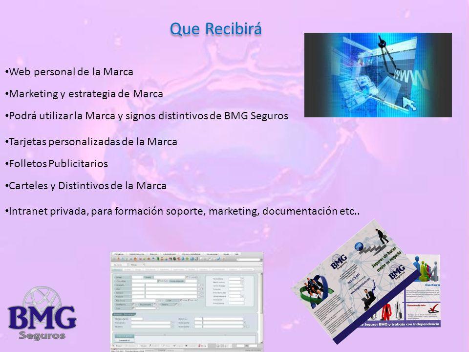 Que Recibirá Web personal de la Marca Marketing y estrategia de Marca Podrá utilizar la Marca y signos distintivos de BMG Seguros Tarjetas personalizadas de la Marca Folletos Publicitarios Carteles y Distintivos de la Marca Intranet privada, para formación soporte, marketing, documentación etc..