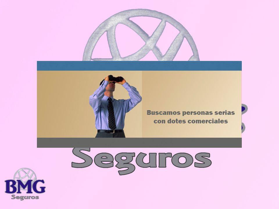 Que Recibirá Web personal de la Marca Marketing y estrategia de Marca Podrá utilizar la Marca y signos distintivos de BMG Seguros Tarjetas personaliza