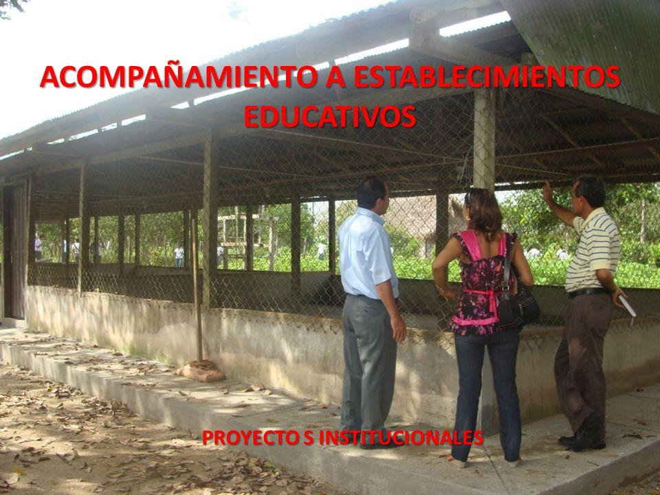 ACOMPAÑAMIENTO A ESTABLECIMIENTOS EDUCATIVOS PROYECTO S INSTITUCIONALES