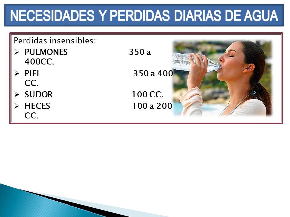 Perdidas insensibles: PULMONES 350 a 400CC. PIEL 350 a 400 CC. SUDOR 100 CC. HECES 100 a 200 CC.