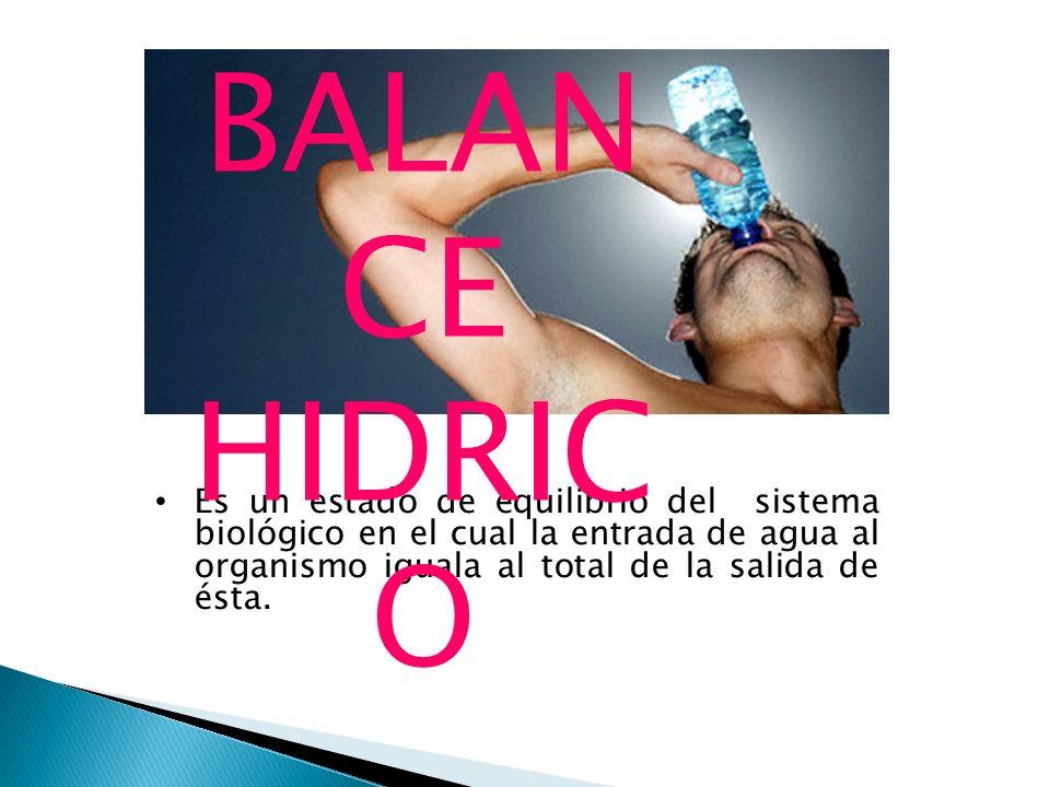 Es un estado de equilibrio del sistema biológico en el cual la entrada de agua al organismo iguala al total de la salida de ésta. BALAN CE HIDRIC O