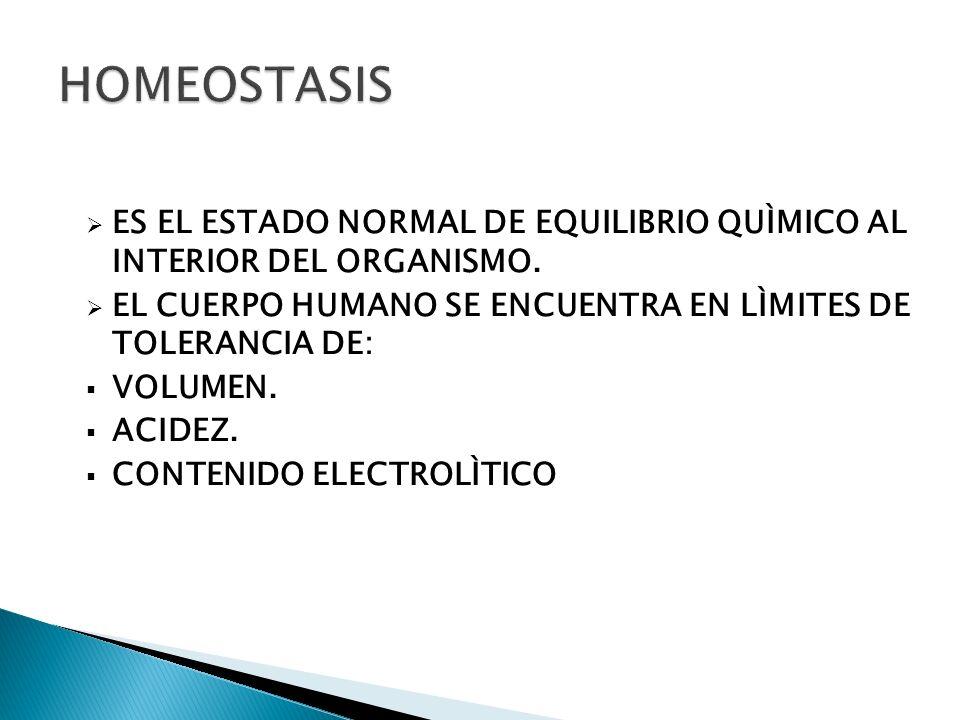 MANTENIMIENTO DE VÍA SHOCK HIPOVOLÉMICO HEMORRÁGICO NO HEMORRÁGICO (QUEMADURAS, DESHIDRATACIÓN, 3ER ESPACIO) DEPLECIÓN DE LÍQUIDO EXTRACELULAR VÓMITOS DIARREAS FÍSTULAS ASCITIS (3ER ESPACIO) ÍLEO TRASTORNOS RENALES