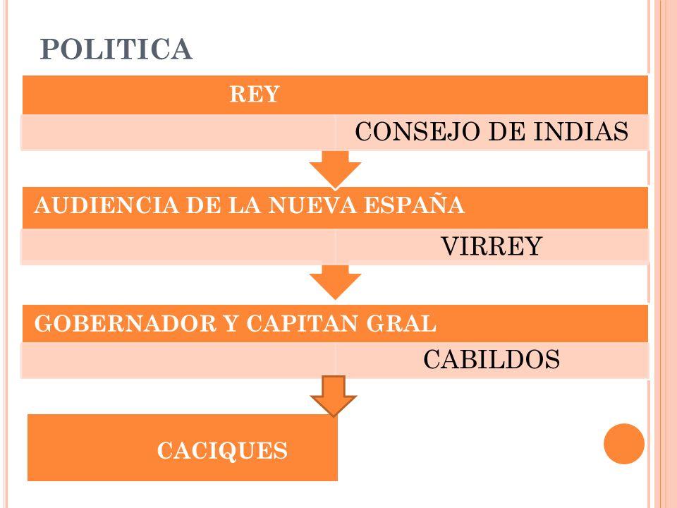POLITICA GOBERNADOR Y CAPITAN GRAL CABILDOS AUDIENCIA DE LA NUEVA ESPAÑA VIRREY REY CONSEJO DE INDIAS CACIQUES
