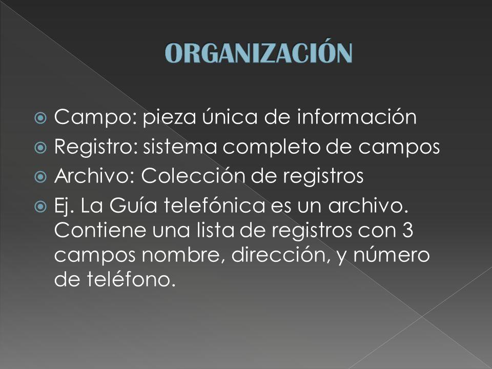 Campo: pieza única de información Registro: sistema completo de campos Archivo: Colección de registros Ej.