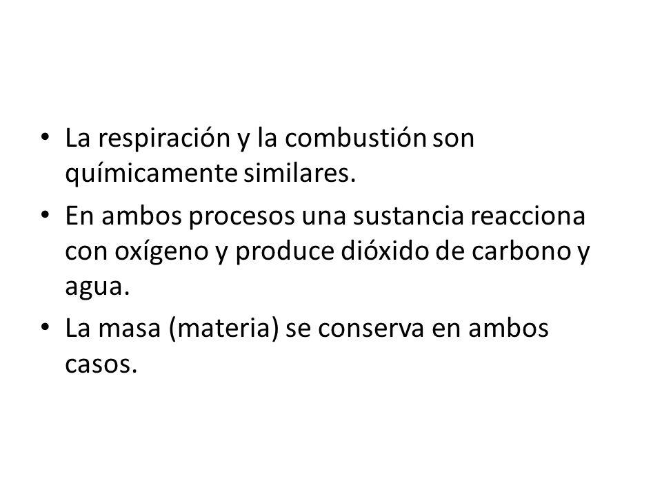 La respiración y la combustión son químicamente similares. En ambos procesos una sustancia reacciona con oxígeno y produce dióxido de carbono y agua.