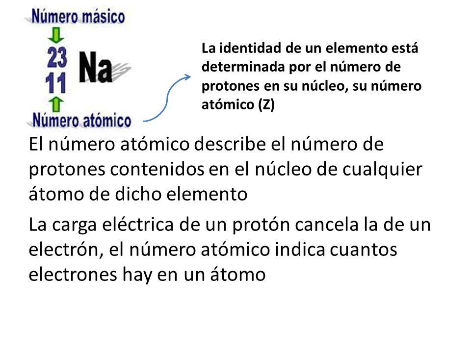 El número atómico describe el número de protones contenidos en el núcleo de cualquier átomo de dicho elemento La carga eléctrica de un protón cancela la de un electrón, el número atómico indica cuantos electrones hay en un átomo La identidad de un elemento está determinada por el número de protones en su núcleo, su número atómico (Z)