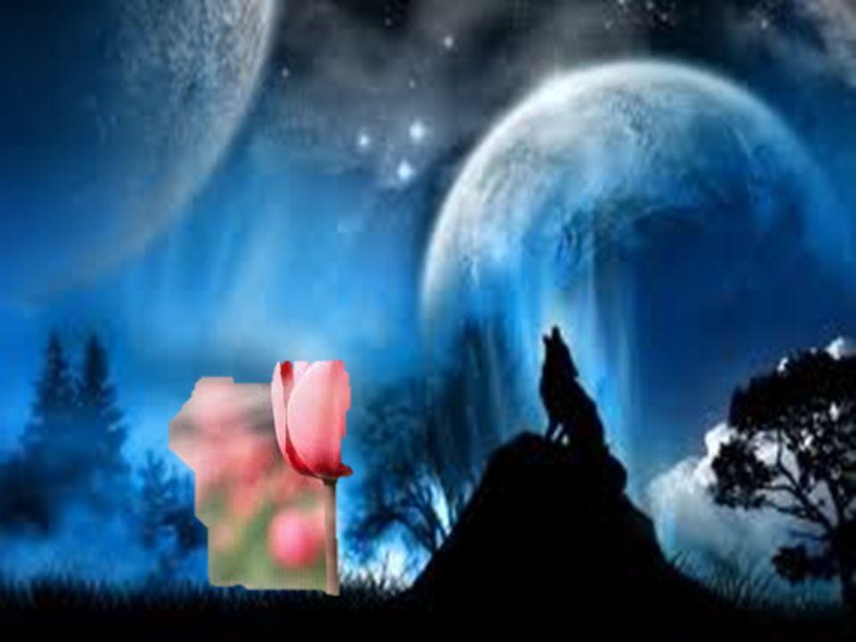 saludando mi adiós y otra mañana y otra voz, como yo, con otro acento, contará a los cuatro vientos…