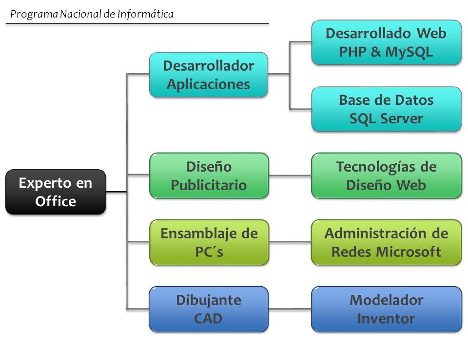 Experto en Office Desarrollado Web PHP & MySQL Base de Datos SQL Server Base de Datos SQL Server Tecnologías de Diseño Web Administración de Redes Mic