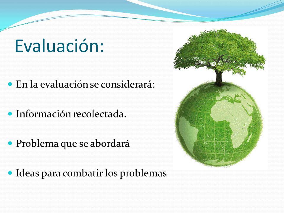 Evaluación: En la evaluación se considerará: Información recolectada.