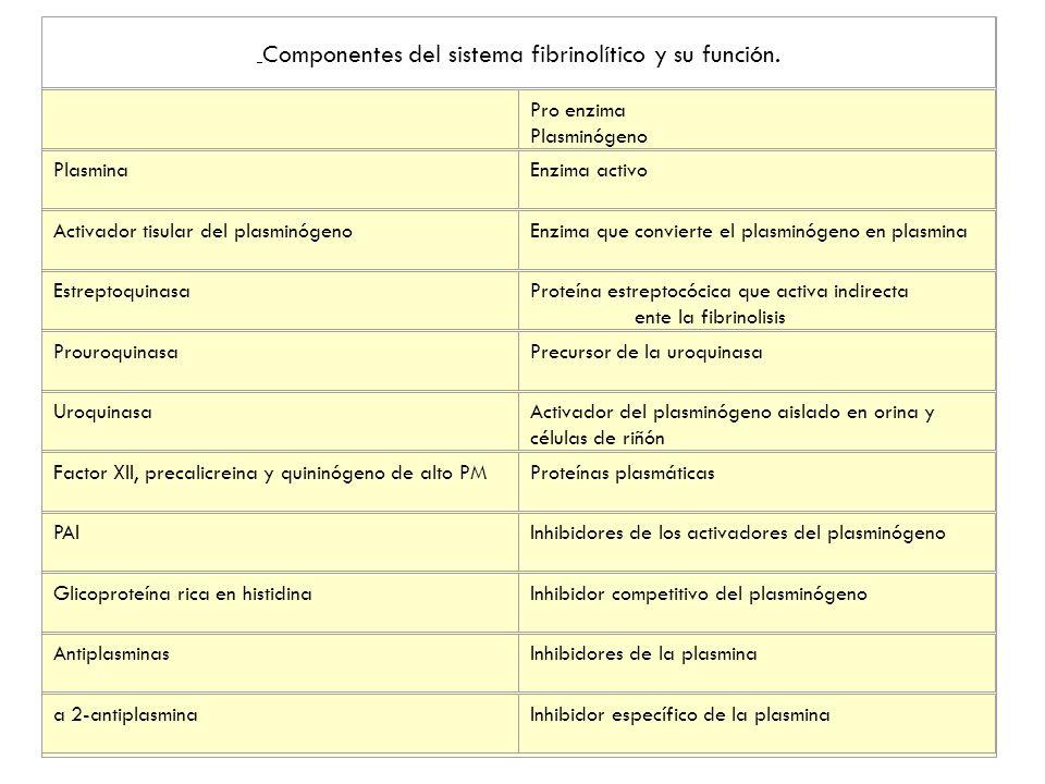 Componentes del sistema fibrinolítico y su función.