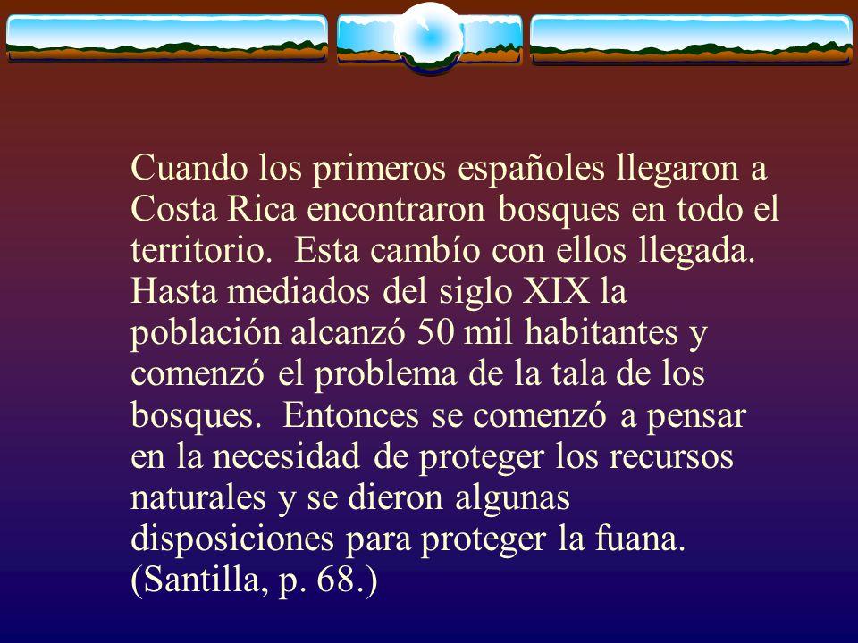Cuando los primeros españoles llegaron a Costa Rica encontraron bosques en todo el territorio. Esta cambío con ellos llegada. Hasta mediados del siglo