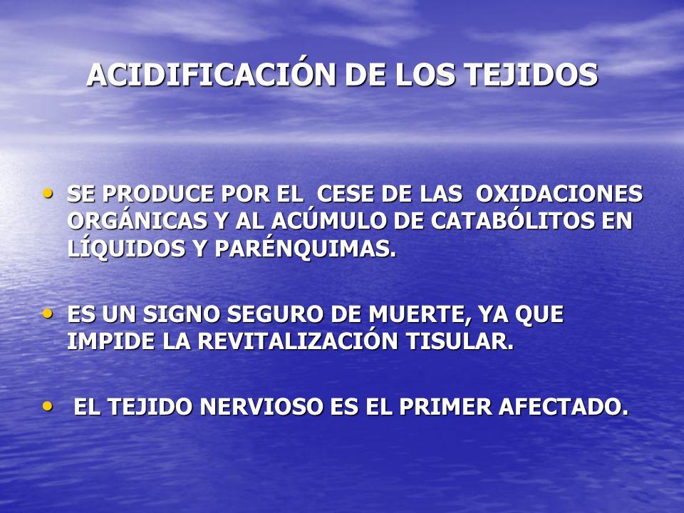 ACIDIFICACIÓN DE LOS TEJIDOS SE PRODUCE POR EL CESE DE LAS OXIDACIONES ORGÁNICAS Y AL ACÚMULO DE CATABÓLITOS EN LÍQUIDOS Y PARÉNQUIMAS. SE PRODUCE POR