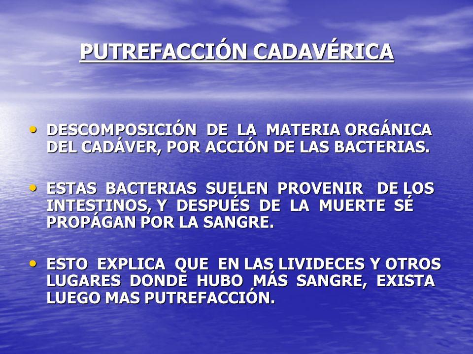 PUTREFACCIÓN CADAVÉRICA DESCOMPOSICIÓN DE LA MATERIA ORGÁNICA DEL CADÁVER, POR ACCIÓN DE LAS BACTERIAS. DESCOMPOSICIÓN DE LA MATERIA ORGÁNICA DEL CADÁ