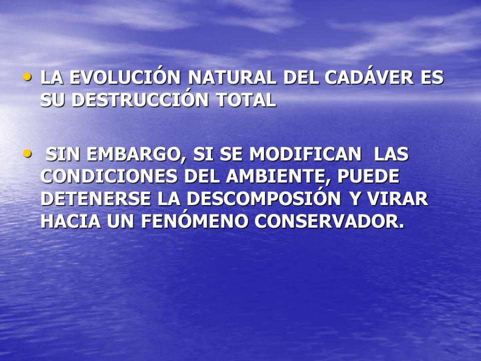 LA EVOLUCIÓN NATURAL DEL CADÁVER ES SU DESTRUCCIÓN TOTAL LA EVOLUCIÓN NATURAL DEL CADÁVER ES SU DESTRUCCIÓN TOTAL SIN EMBARGO, SI SE MODIFICAN LAS CON