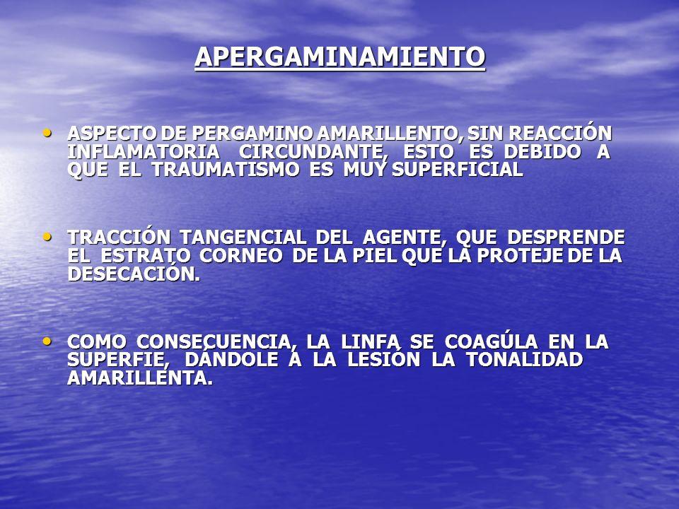 APERGAMINAMIENTO ASPECTO DE PERGAMINO AMARILLENTO, SIN REACCIÓN INFLAMATORIA CIRCUNDANTE, ESTO ES DEBIDO A QUE EL TRAUMATISMO ES MUY SUPERFICIAL ASPEC