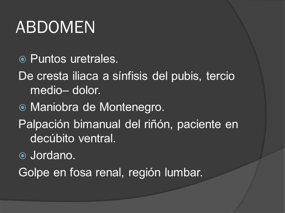 ABDOMEN Puntos uretrales. De cresta iliaca a sínfisis del pubis, tercio medio– dolor. Maniobra de Montenegro. Palpación bimanual del riñón, paciente e
