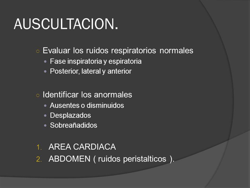AUSCULTACION. Evaluar los ruidos respiratorios normales Fase inspiratoria y espiratoria Posterior, lateral y anterior Identificar los anormales Ausent