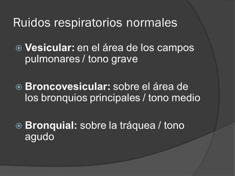 Ruidos respiratorios normales Vesicular: en el área de los campos pulmonares / tono grave Broncovesicular: sobre el área de los bronquios principales