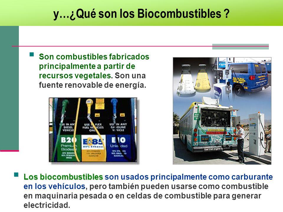 Son combustibles fabricados principalmente a partir de recursos vegetales. Son una fuente renovable de energía. Los biocombustibles Los biocombustible