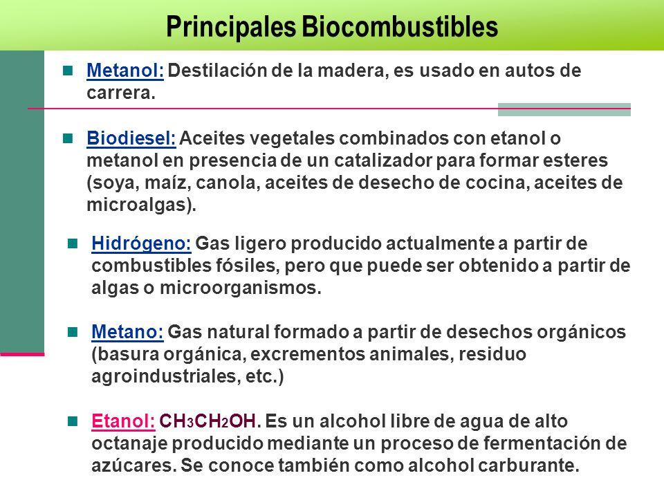 Biodiesel: Aceites vegetales combinados con etanol o metanol en presencia de un catalizador para formar esteres (soya, maíz, canola, aceites de desech
