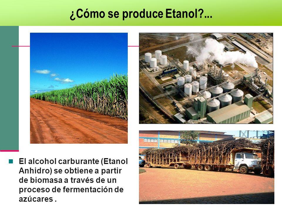 ¿Cómo se produce Etanol?... El alcohol carburante (Etanol Anhidro) se obtiene a partir de biomasa a través de un proceso de fermentación de azúcares.