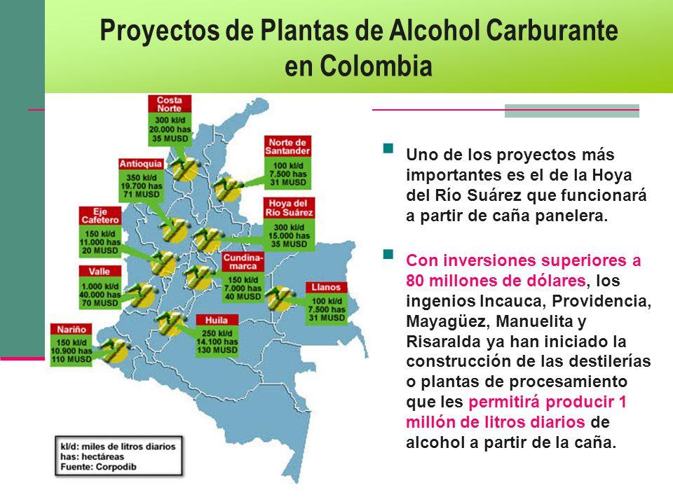 Proyectos de Plantas de Alcohol Carburante en Colombia Uno de los proyectos más importantes es el de la Hoya del Río Suárez que funcionará a partir de