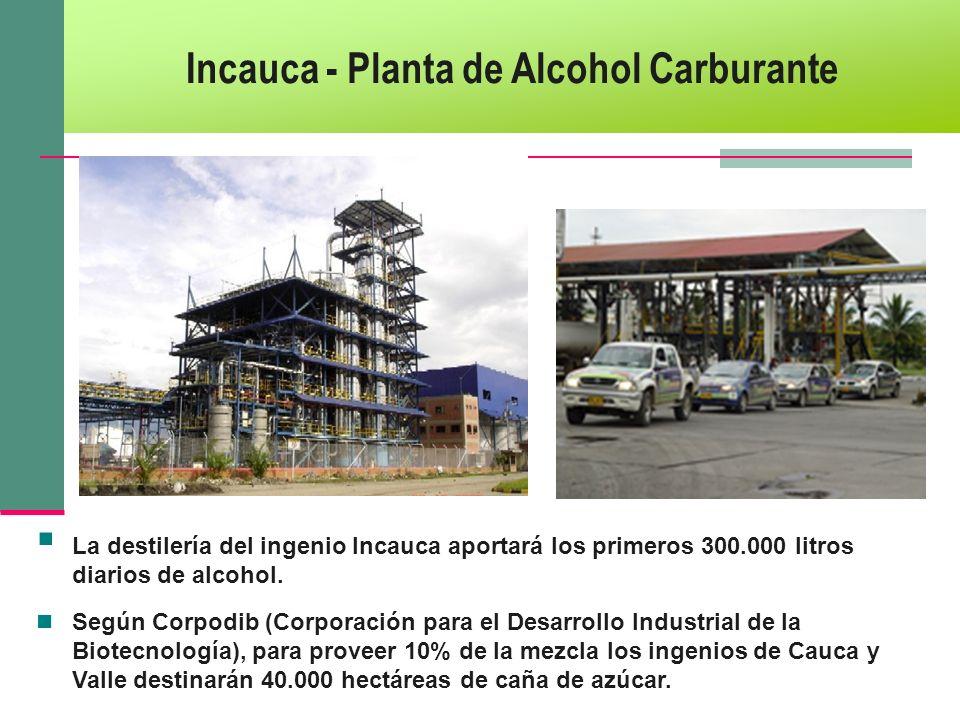 Incauca - Planta de Alcohol Carburante La destilería del ingenio Incauca aportará los primeros 300.000 litros diarios de alcohol. Según Corpodib (Corp