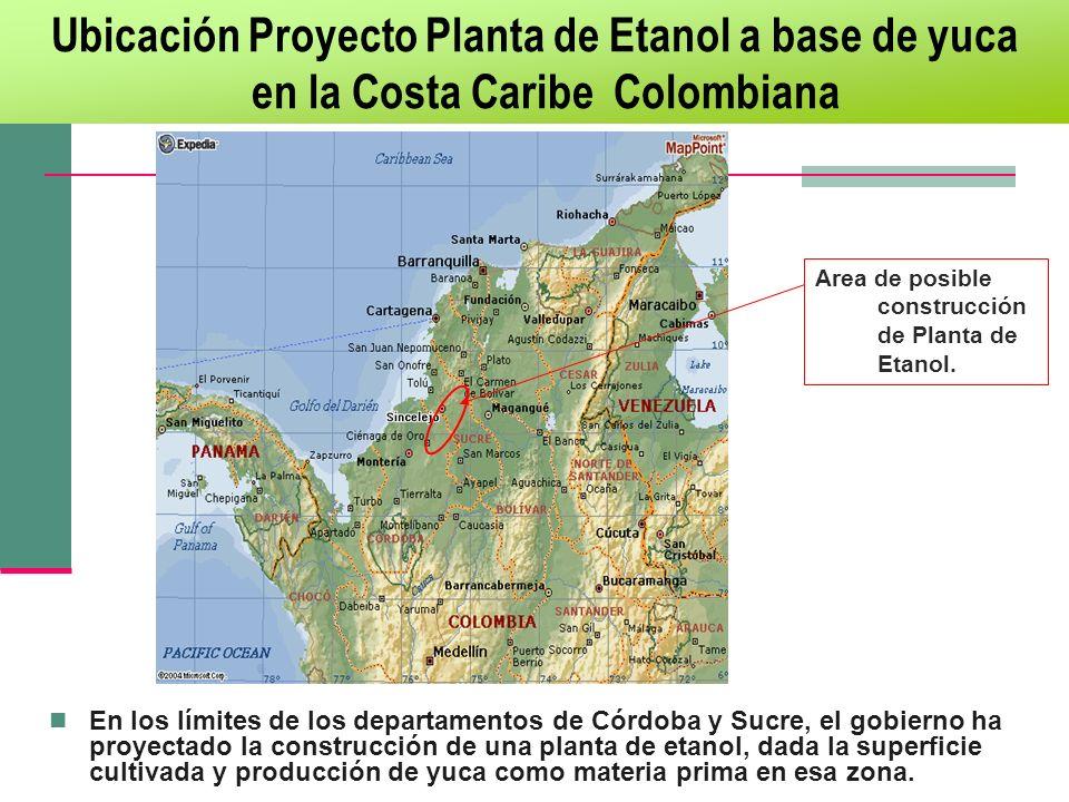 En los límites de los departamentos de Córdoba y Sucre, el gobierno ha proyectado la construcción de una planta de etanol, dada la superficie cultivad
