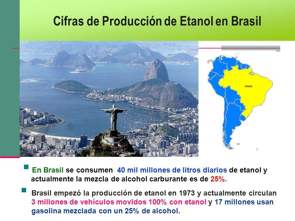 Cifras de Producción de Etanol en Brasil Brasil empezó la producción de etanol en 1973 y actualmente circulan 3 millones de vehículos movidos 100% con