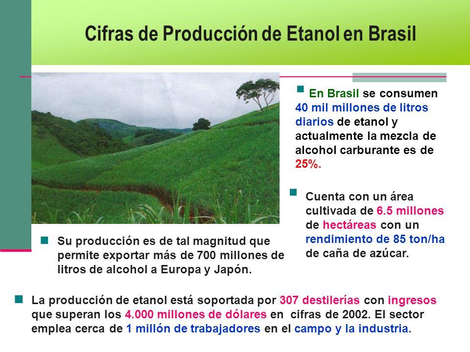 Cifras de Producción de Etanol en Brasil La producción de etanol está soportada por 307 destilerías con ingresos que superan los 4.000 millones de dól