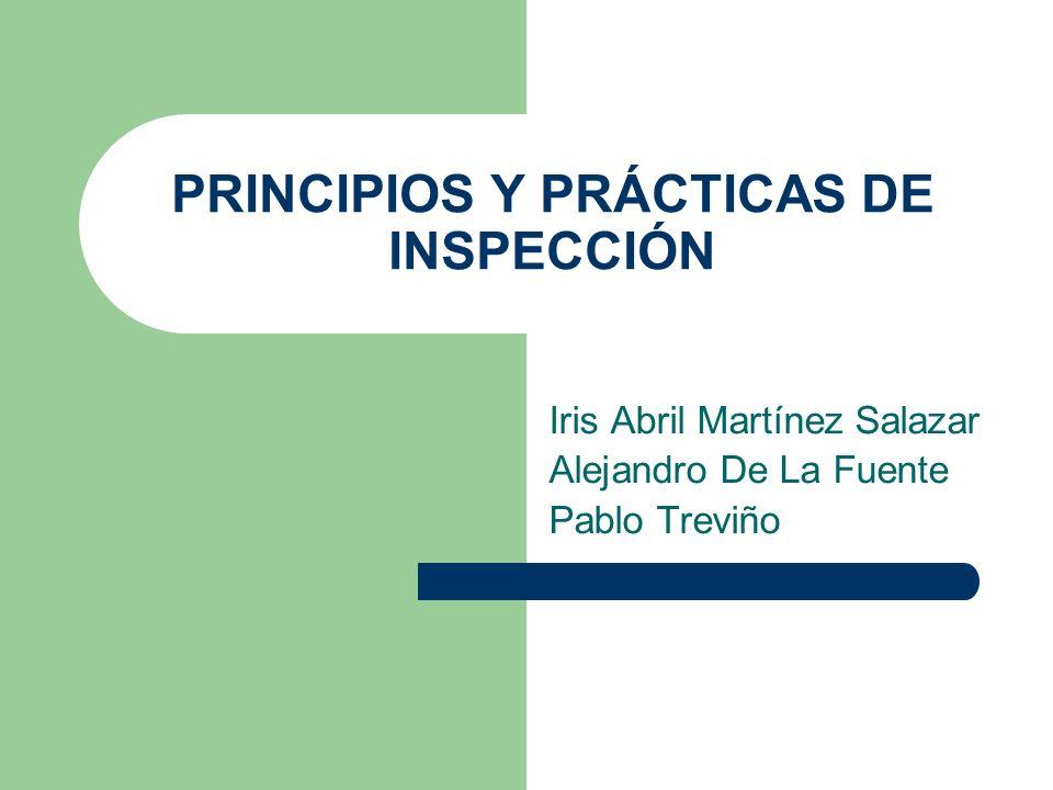 PRINCIPIOS Y PRÁCTICAS DE INSPECCIÓN Iris Abril Martínez Salazar Alejandro De La Fuente Pablo Treviño