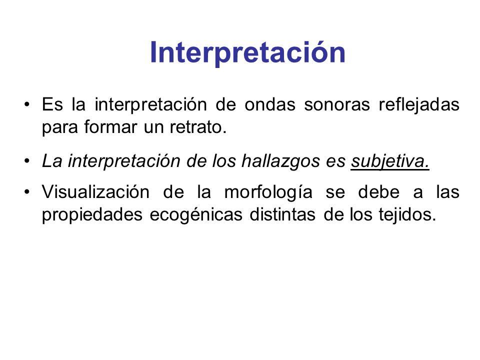 Interpretación Es la interpretación de ondas sonoras reflejadas para formar un retrato. La interpretación de los hallazgos es subjetiva. Visualización