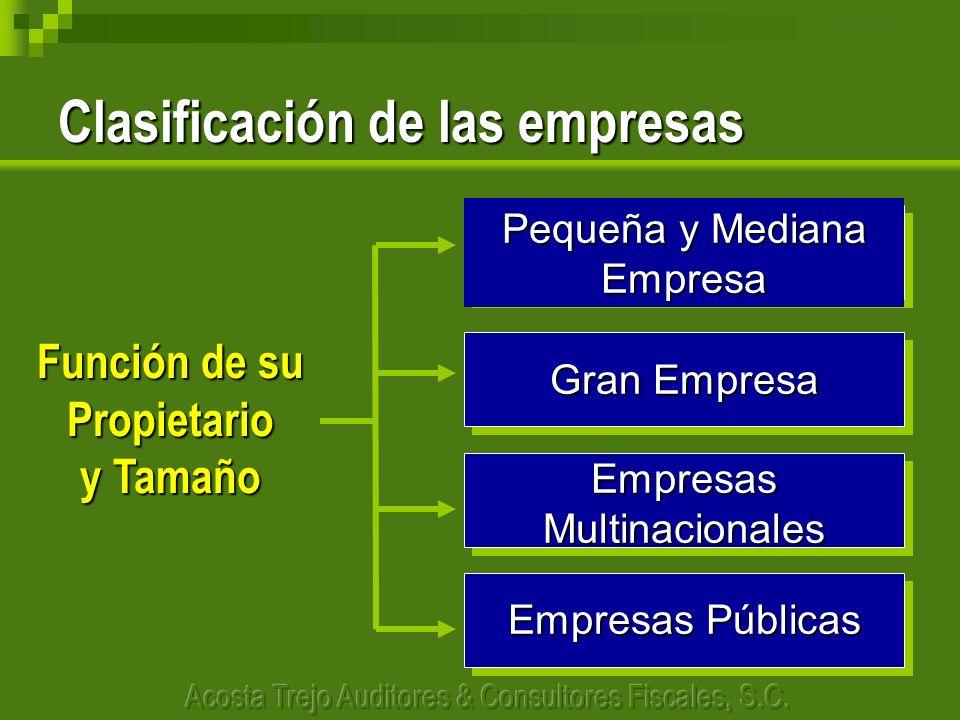 Clasificación de las empresas Función de su Propietario y Tamaño Pequeña y Mediana Empresa Gran Empresa Empresas Multinacionales Empresas Públicas