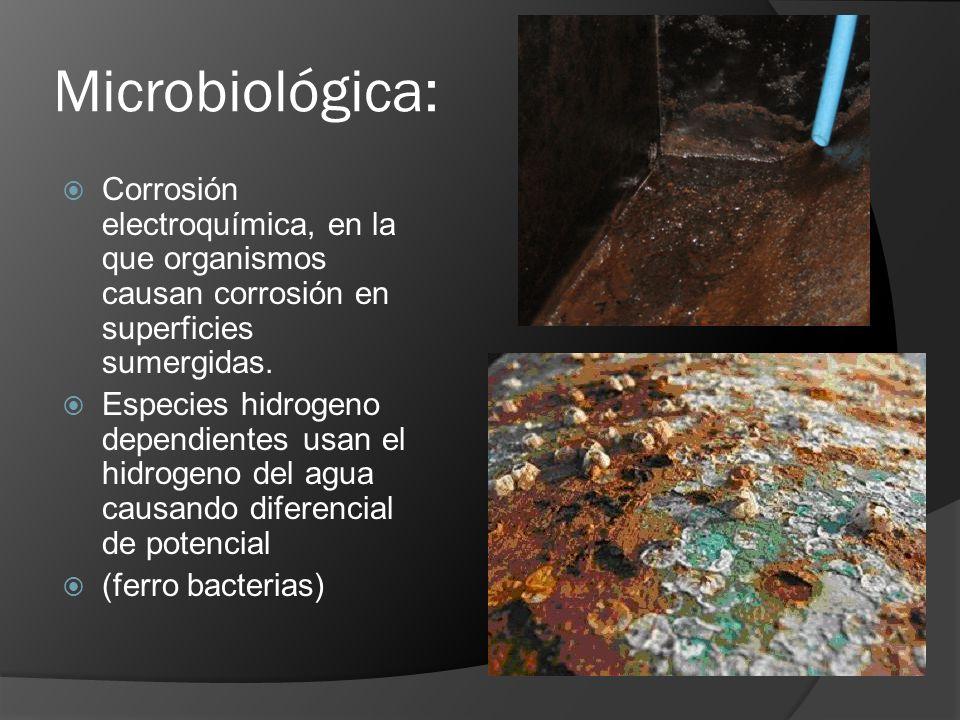 Microbiológica: Corrosión electroquímica, en la que organismos causan corrosión en superficies sumergidas. Especies hidrogeno dependientes usan el hid