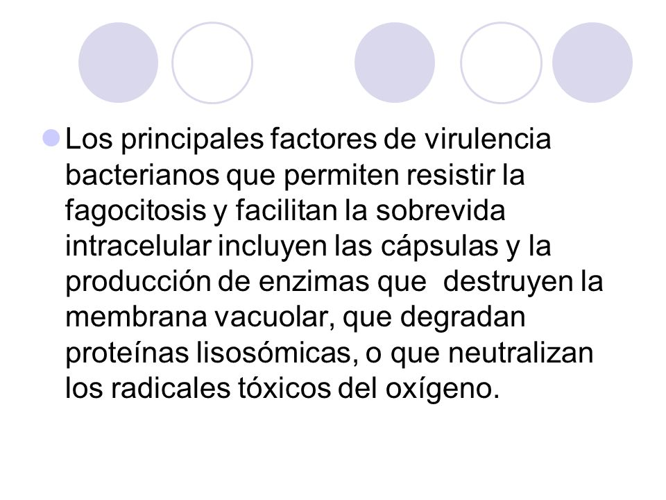 Los principales factores de virulencia bacterianos que permiten resistir la fagocitosis y facilitan la sobrevida intracelular incluyen las cápsulas y