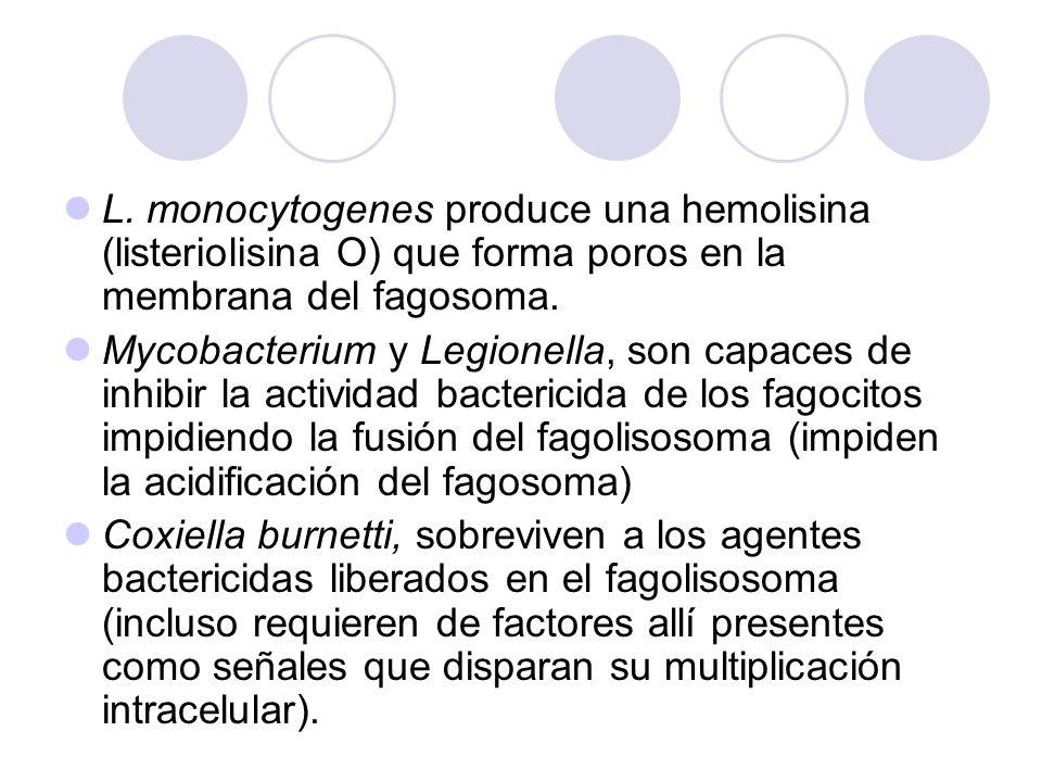 L. monocytogenes produce una hemolisina (listeriolisina O) que forma poros en la membrana del fagosoma. Mycobacterium y Legionella, son capaces de inh