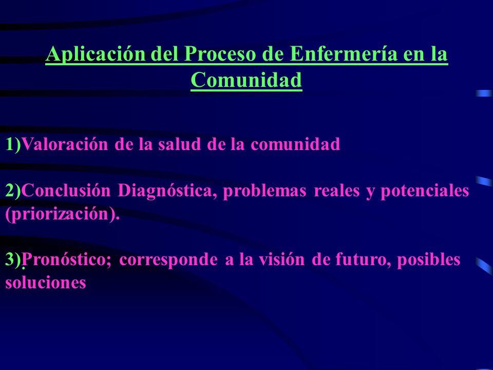 Aplicación del Proceso de Enfermería en la Comunidad 1)Valoración de la salud de la comunidad 2)Conclusión Diagnóstica, problemas reales y potenciales (priorización).