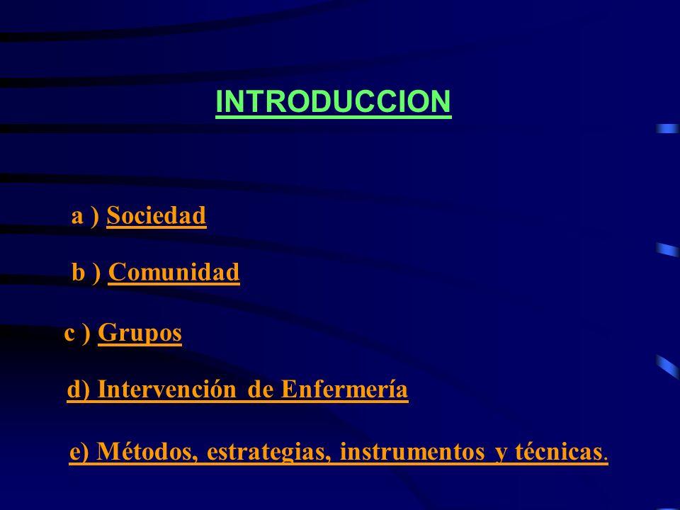 INTRODUCCION a ) Sociedad b ) Comunidad c ) Grupos d) Intervención de Enfermería e) Métodos, estrategias, instrumentos y técnicas.