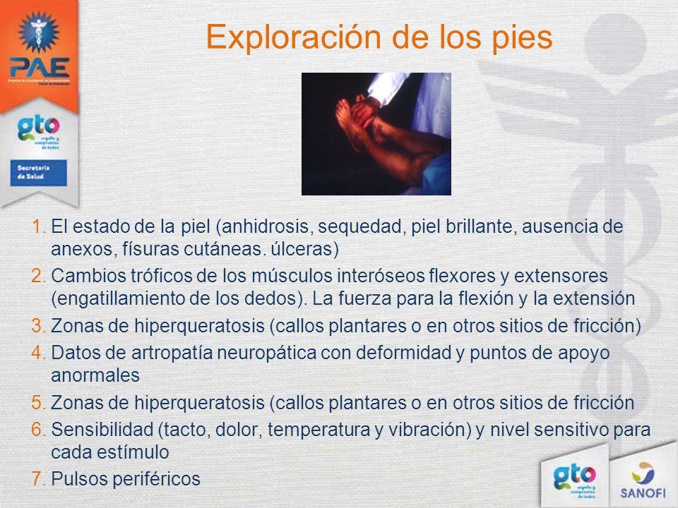 Exploración de los pies 1.El estado de la piel (anhidrosis, sequedad, piel brillante, ausencia de anexos, físuras cutáneas. úlceras) 2.Cambios trófico