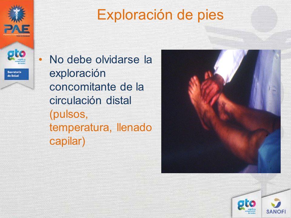Exploración de pies No debe olvidarse la exploración concomitante de la circulación distal (pulsos, temperatura, llenado capilar)