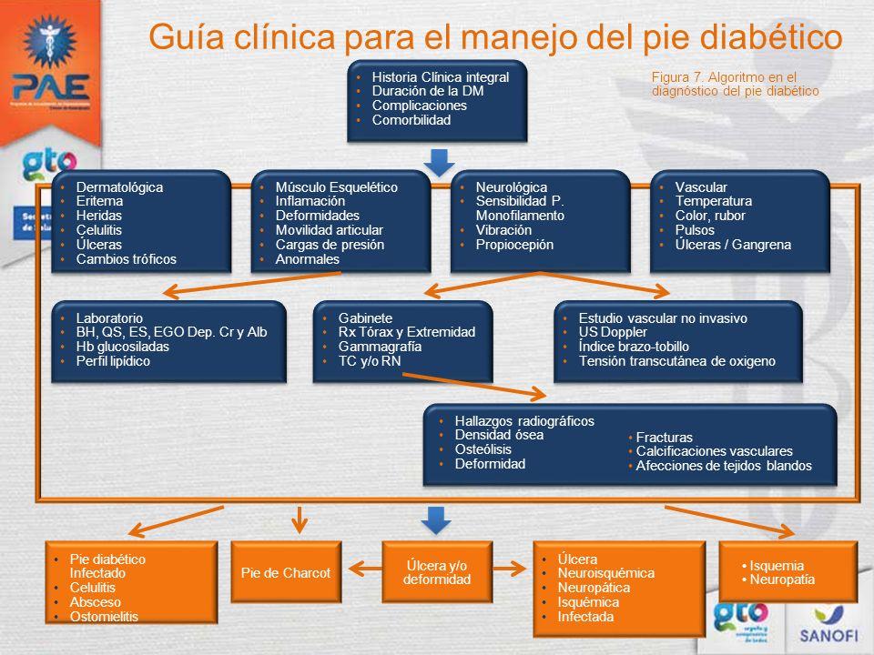 Historia Clínica integral Duración de la DM Complicaciones Comorbilidad Dermatológica Eritema Heridas Celulitis Úlceras Cambios tróficos Músculo Esque
