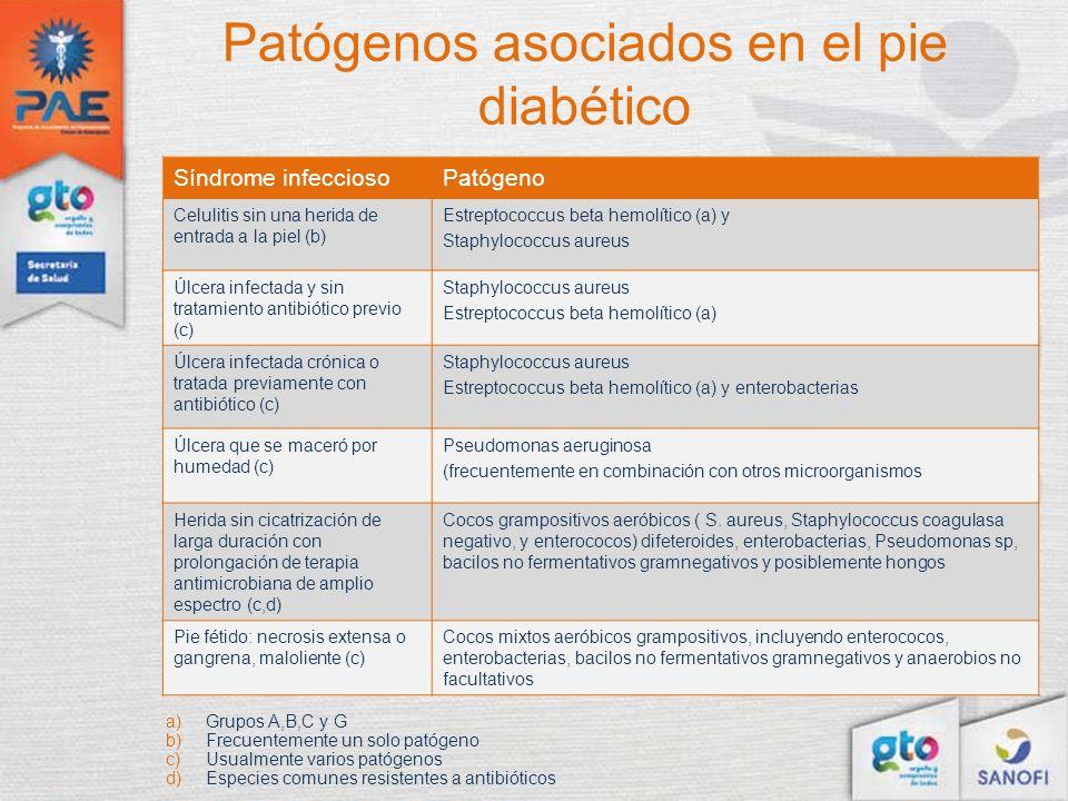 Patógenos asociados en el pie diabético Síndrome infecciosoPatógeno Celulitis sin una herida de entrada a la piel (b) Estreptococcus beta hemolítico (