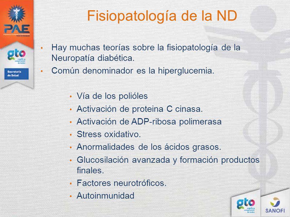 Fisiopatología de la ND Hay muchas teorías sobre la fisiopatología de la Neuropatía diabética. Común denominador es la hiperglucemia. Vía de los polió
