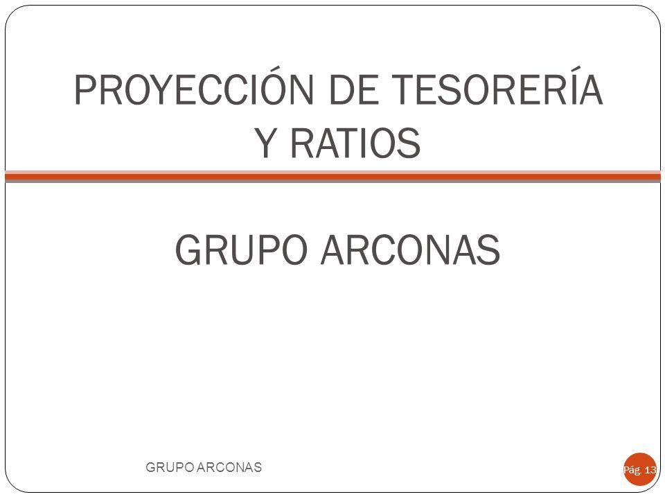 PROYECCIÓN DE TESORERÍA Y RATIOS GRUPO ARCONAS GRUPO ARCONAS Pág. 13