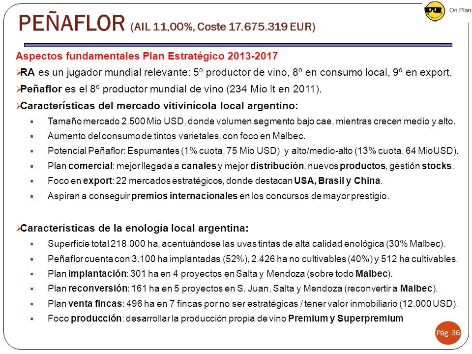 Aspectos fundamentales Plan Estratégico 2013-2017 RA es un jugador mundial relevante: 5º productor de vino, 8º en consumo local, 9º en export.
