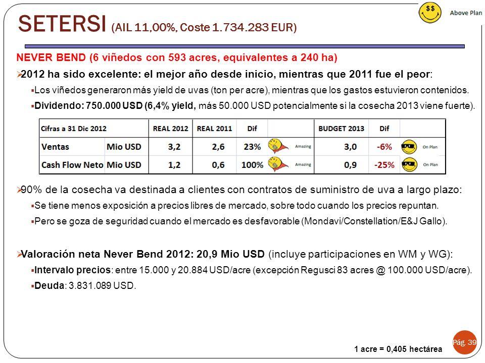 Pág. 39 SETERSI (AIL 11,00%, Coste 1.734.283 EUR) 1 acre = 0,405 hectárea NEVER BEND (6 viñedos con 593 acres, equivalentes a 240 ha) 2012 ha sido exc